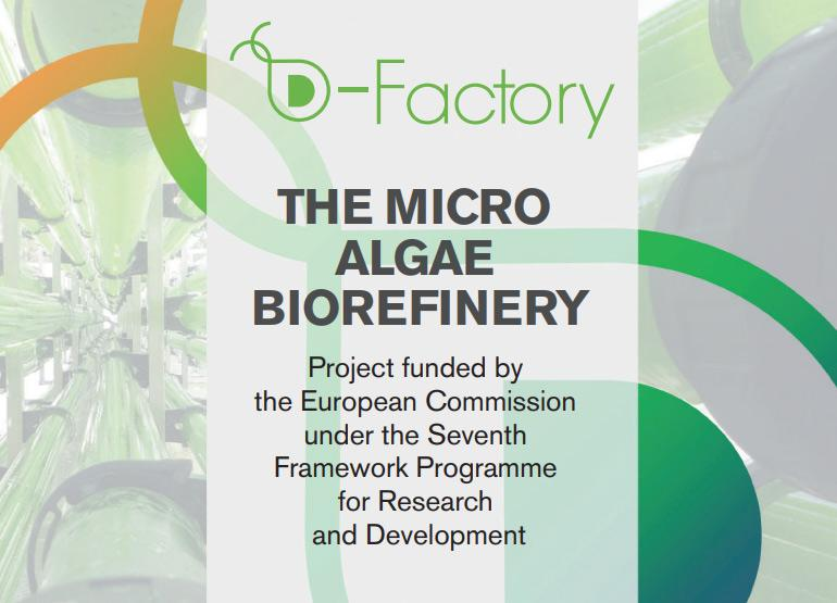 D-Factory project aims to set biorefinery world benchmark
